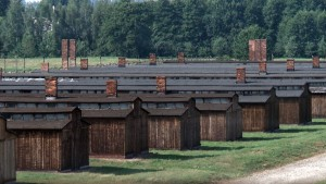 Return to Auschwitz 01